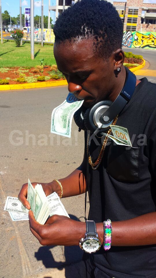 willy paul dollars 3