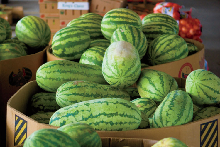 South Carolina State Farmer's Market