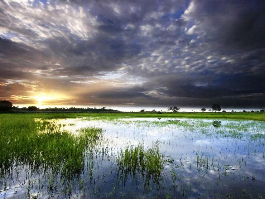 Orinoco River The 8 Most Dang...