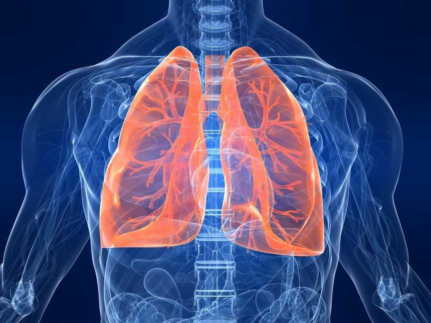 Lung-Transplant