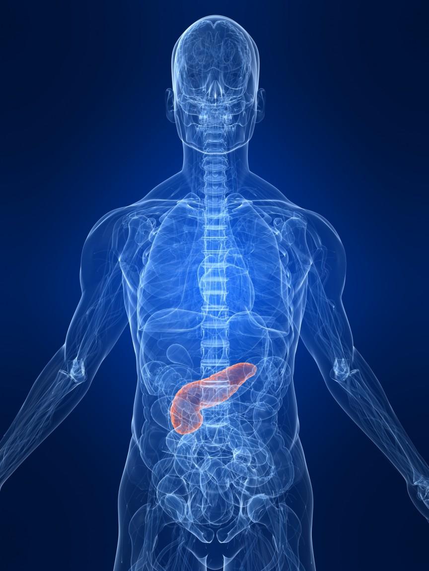 Pancreas-Transplant