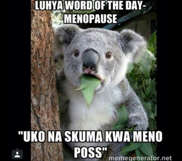 luhya24