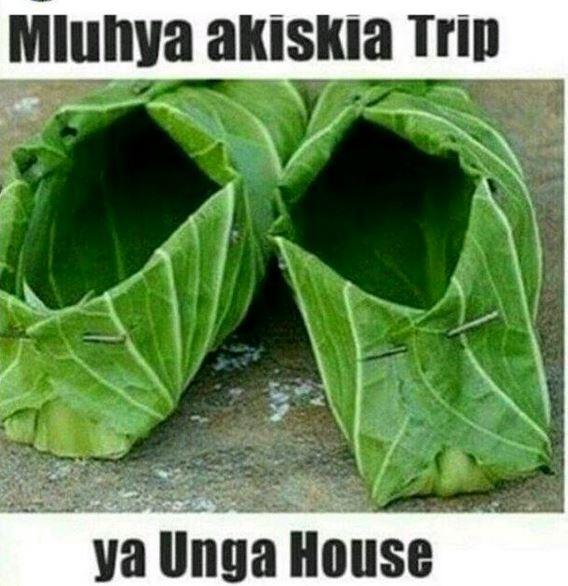 luhya40