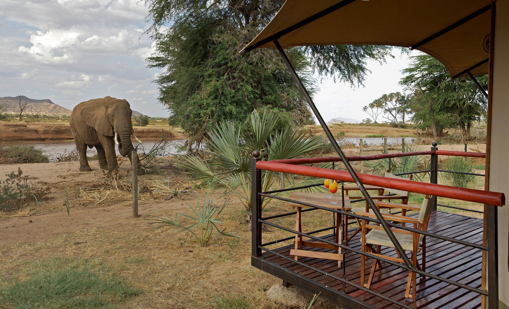 Sentrim Samburu