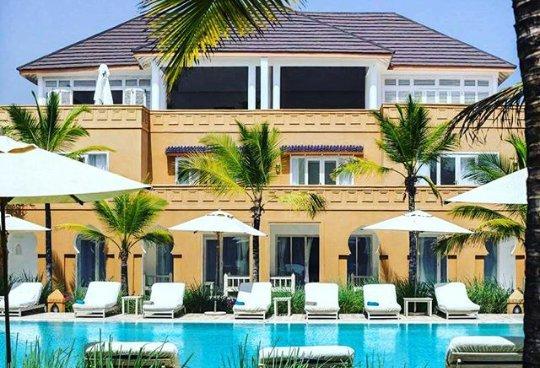 Medina Palms
