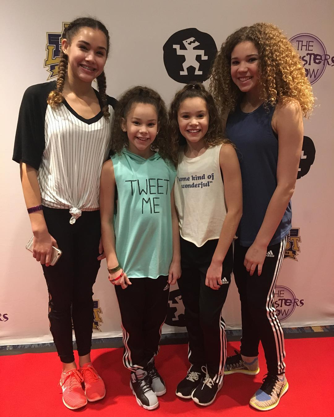 How Much Money The Haschak Sisters Make On Youtube Net